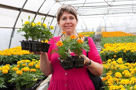 Выращиваем рассаду цветов